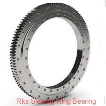 Thin Section Bearing-Cross/Crossed Cylindrical Roller Bearings (RB14025)